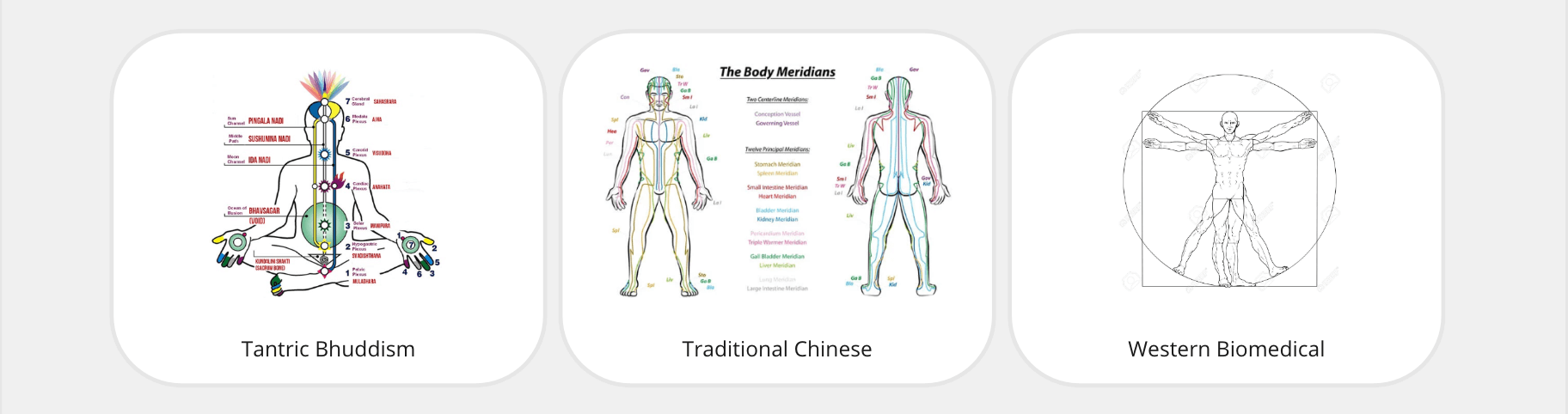 Wellness Health Diversity Patch supports chinese, western and buddhist health practices.